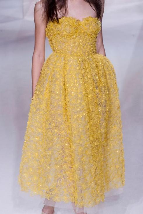 giambattista-valli-details-haute-couture-spring-2013-pfw29